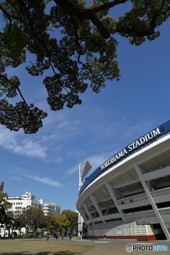 横浜公園は横浜市中区にある、横浜で2番目に古い公園。DeNAベイスターズの本拠地・横浜スタジアムと、春のチューリップが有名です。