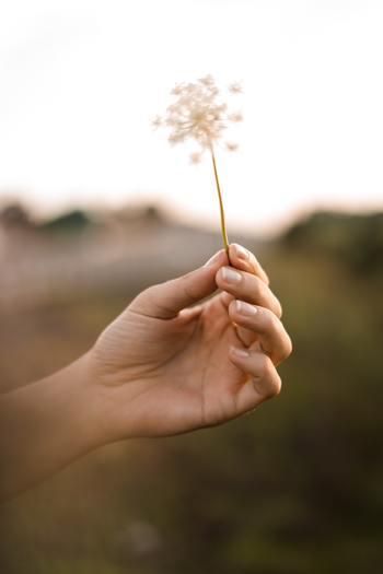 そして、一度逃げてしまうと何かにぶつかるたびに逃げようとする癖がついてしまいます。これでは周りからの評価を落とすうえ、自分に自信をなくしてしまいますよね。
