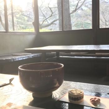 もちろん、予約なしでも抹茶をいただくことも可能です。美しい庭園を眺めながら味わう本格的な抹茶。ここでしか味わえない体験です。庭園の散策途中に、ぜひ立ち寄ってみてはいかがでしょうか。