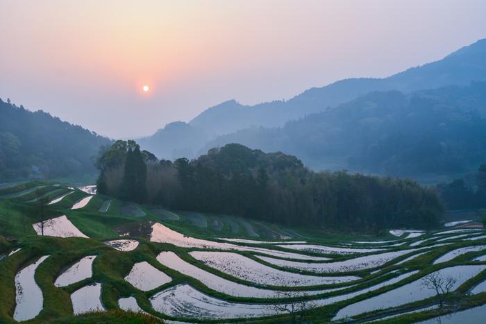 東京から一番近い棚田であり、日本で唯一、雨水のみで耕作を行っている貴重な天水田は、「日本の棚田百選」にも選ばれています。