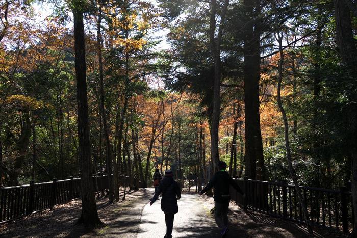 「濃溝の滝」から雑木林を歩いて行くと駐車場に。このコースで1周約800mなので軽い散策にちょうど良さそう。