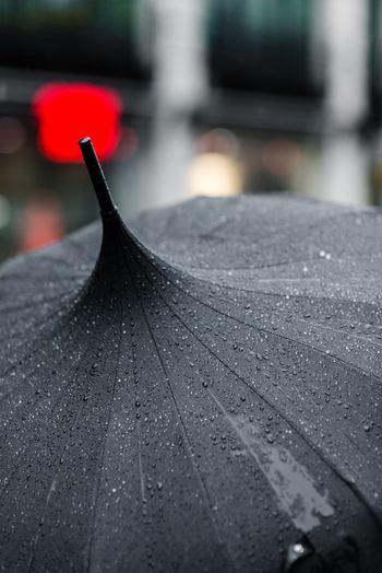 雨に濡れた傘を、そのまま傘立てに入れないようにしましょう。 別の場所で乾かしてから丸めて、傘立てに収納するのがベストです。ビショビショの場合はタオルなどで拭いておくと乾きが早くなって◎