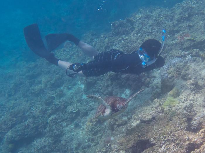 シュノーケルを付けて、色取り取りの珊瑚やキラキラの魚たちを鑑賞するシュノーケリング。ダイビングのように、深い所まで泳げるように重いボンベを背負う必要が無いので、軽々と泳ぐことが出来ます。シュノーケリングは、海の中の鑑賞を手軽に楽しみたい方や、お子様にもおすすめ。また、ライフジャケットの貸し出しも行っているので、泳げない方でも安心ですよ。