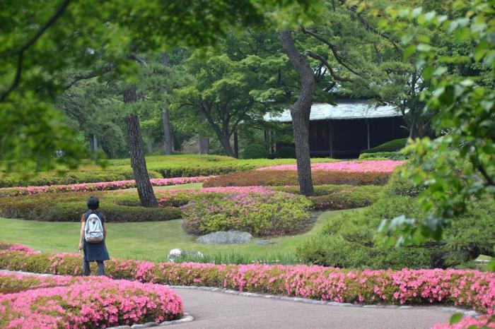 それらは、特に歴史や建築に興味がない方であっても、城郭や門の堂々たる様を目にし、茶屋や庭園の優雅で上品な風情に触れれば、ここが大都市・東京のど真ん中であることをすっかり忘れて、心弾み清々しい心地にきっとなるはずです。 【サツキ咲く5月下旬の「二の丸庭園」。奥の建物は「諏訪の茶屋」】