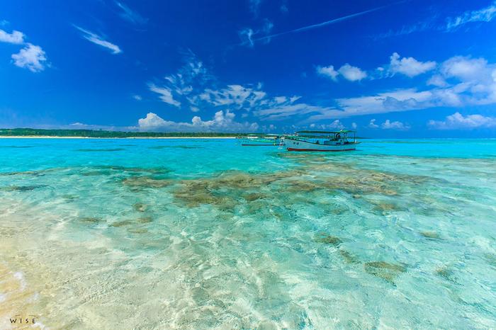 与論島の海は、船が浮いているかのような透明度で見惚れるような美しさを誇ります。そして、その透明感と真っ白の砂浜だからこそ見られる鮮やかなエメラルドグリーン。与論島は一周20kmほどの小さな島ですが、なんとその中にそんな絶景ビーチが20箇所以上あります。どのビーチも雰囲気が違うので、ビーチを巡るだけでも十分に楽しめます。