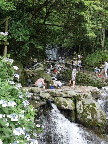 県指定名勝・白糸の滝の側にあるのが「ふれあいの里」。周囲には樹齢約300年の県指定天然記念物「萬龍楓」が自生し、四季折々の花々が咲き誇り、訪れる人々を魅了しています。