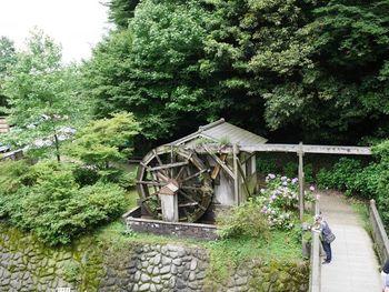 食事処「四季の茶屋」では、古くから糸島地方に伝わる郷土料理「ちりソーメン」や、「やまめの塩焼き」が味わえ、夏にはそうめん流しなども楽しめるそうです。 滝や山合いの景色を見ながら、家族や友人とゆっくり&のんびりとしたひとときを過ごせる、憩いのスポットです。
