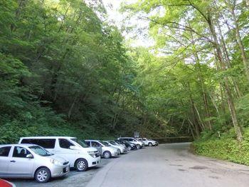 自家用車で行く場合の白糸の滝の駐車場は、白糸ハイランドウェイの路肩に無料駐車場があるといった感じです。 滝入口付近に近づけば近づくほど、人気の為、車が混雑するので、少し離れた場所に駐車し、歩くのがおすすめ!白糸の滝へは駐車場から徒歩で150mほど歩いたところ。 道は砂利道になっているので、なるべくスニーカーなどの歩きやすい靴でお出かけください♪