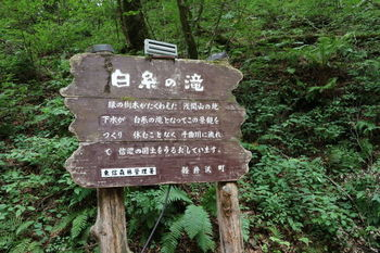 白糸の滝は、旧軽井沢から峰の茶屋を結ぶ延長10kmの有料道路「白糸ハイランドウェイ」の道沿いにあります。 軽井沢方面からは旧軽井沢ロータリー~三笠通り経由で小瀬料金所を目指し、草津方面からは日本ロマンチック街道~鬼押ハイウェイ経由で峰ノ茶屋料金所を目指すのが一般的です。  電車を利用する場合は、北陸新幹線軽井沢駅から草軽交通の路線バスがおすすめです。「北軽井沢」方面行きで約23分、白糸の滝で下車した後は、徒歩で約5分ほどで白糸の滝に到着します。