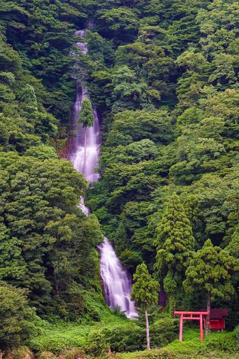 日本の滝百選の一つにも選ばれる山形県の白糸の滝。最上川沿いに標高300-500mの山地が急斜面を形成する最上峡には、最上四十八滝という滝群が存在します。その滝群の西端にある白糸の滝は、その中でも最大と言われています。 江戸時代前期の俳諧師、松尾芭蕉の句にも、この白糸の滝が詠まれています。  <松尾芭蕉> おくのほそ道「白糸の滝は青葉の隙々に落て、仙人堂、岸に臨て立。水みなぎつて舟あやうし。」