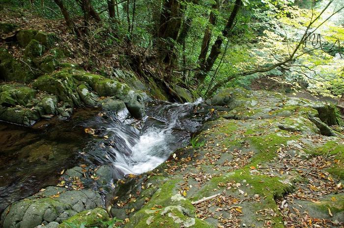 滝の脇にある急な石の階段を登って行くと、滝の上部付近を目指すことも出来ます。 コケなども生えているので滑りやすくなっていますので上る際は注意しながら登りましょう!滝の真上の風景はこんな感じ! 滝を下から見上げることはあっても、滝を上から見るという機会はあまりないので、体験してみては…。 滝のすぐ傍では、夏に限定で、そうめん流しが開催されています。夏休み期間中(7月下旬~8月)は、毎日運営されているようなので、チェックして訪れてみてはいかがでしょう♪