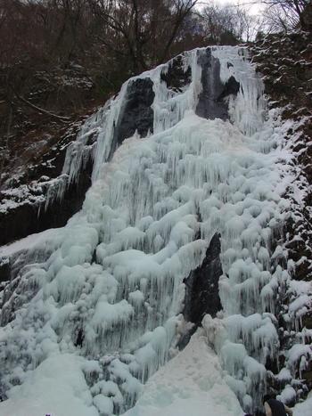 冬の滝を楽しむというのもまたいいものです。真っ白ではなく、少し青みがかった白色をしているのは、水が清らかな証拠なんだとか…。 なんだか、氷のアートを鑑賞しているみたいですね。