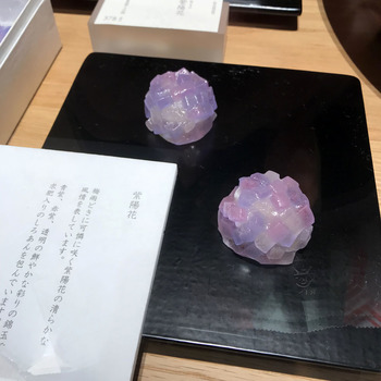博多の老舗和菓子店『鈴懸』のお店が、新宿伊勢丹にもあります。 淡い青や紫の錦玉で白餡を包んだ「紫陽花」は、紫陽花の儚さが表現されています。 都内では、東京ミッドタウンにも店舗があります。