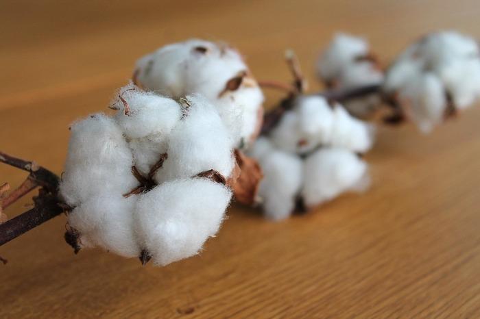 コットン(綿)は、肌触りの良さが特徴。肌への負担も少ないと言われているので、肌が弱い方やお子さまのいるご家庭におすすめの素材です。通気性が良く清涼感もあり、お風呂上がりの足元もすっきり爽やかに包んでくれます。