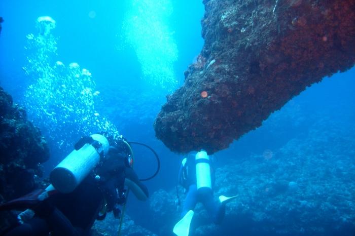世界でもトップレベルの水の美しさを誇る与論島は、まさにダイビングに最適な環境なのです。与論島では季節風によって潜るポイントが変わりますが、一年中潜ることが出来ます。北側は沈船や海中宮殿などの人気スポットがあったり、ウミガメにもよく遭遇することが多め。南側で見られる長崎の塔などダイナミックな地形は感動ものですし、大物の生き物に出会える確率も高いです。