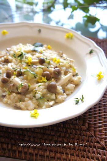 炊いた玄米、しめじ、生クリーム、たまねぎ、ズッキーニなどで作る「しめじズッキーニのタイム香る玄米リゾット」。香り、風味も抜群のヘルシーなリゾットは、休日のブランチやお夜食にもよさそう。