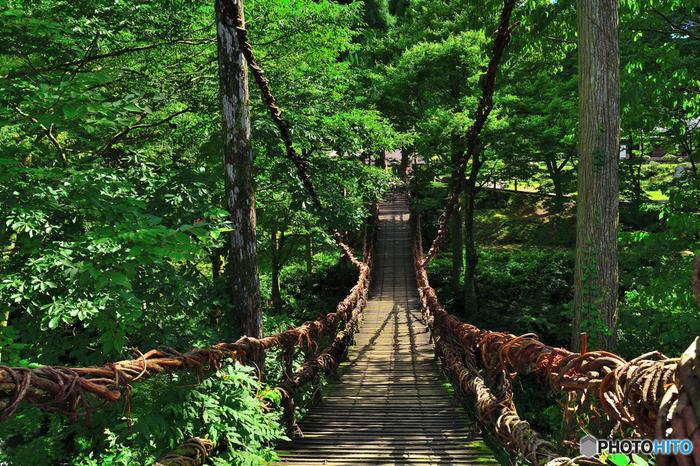 この橋の上で愛を誓うと永遠に幸せになれると言われていて、多くのカップルが訪れる恋愛のパワースポットとしても人気です。この橋の下で、二つに分かれていた川が一つにつながっているのが、その理由。山奥にあるのでちょっと行きにくいですが、福井に来たら大切な人と渡って永遠の愛を誓ってみては?片思い中の人なら橋の袂にある恋みくじで恋愛成就を占ってみるのもいいですね。