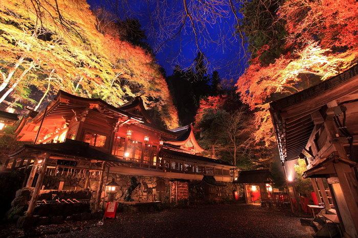 毎年、11f月上旬から下旬頃、貴船神社だけでなく、貴船口から貴船神社の本宮、結社、奥宮までの街道沿いに「貴船もみじ灯篭(とうろう)」がともされ、一帯が幽玄な光に包まれます。