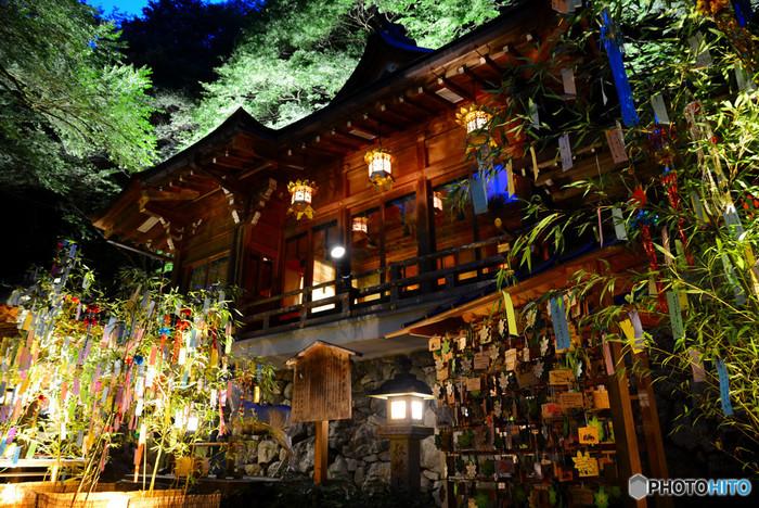 夕暮れから夜にかけて表参道の青もみじから、境内の笹飾りや社殿がライトアップされます。短冊に願い事を書いて結ぶこともできるので、子どもの頃を思い出しながら、願い事を書いてみてはいかがでしょうか。