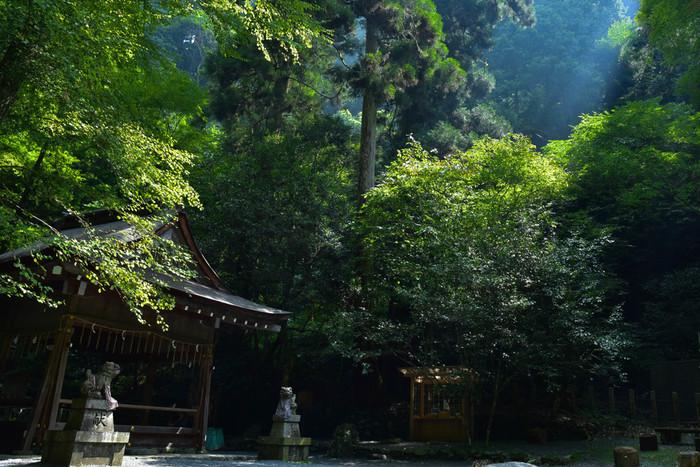 奥宮社殿の真下には「日本三大龍穴」の1つである巨大な「龍穴」がありますが、誰も見ることは許されていません。が、パワースポットとして有名なので、奥宮を訪れるだけでもパワーを感じるかも。