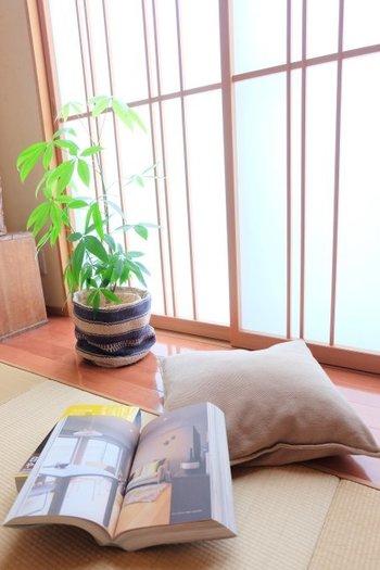 観葉植物の鉢カバーには、ざっくりとした質感の布製のものを選んで。陶器やプラスチックのものより、リラックス感が生まれます。
