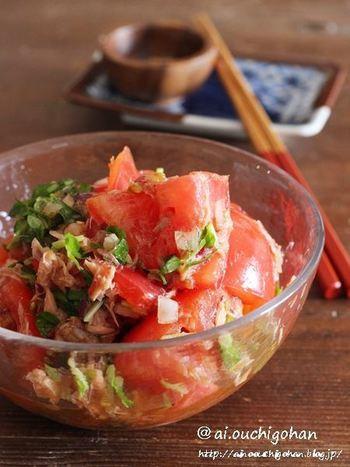 サラダの一品でも美味しい、ツナと野菜の組み合わせ。なかでも、このような「ツナ&トマト」のコンビは人気です。味がしっかりしているツナと、酸味のあるトマトが、絶妙ですよね。  そのほかに、ツナにぴったりな野菜といえば・・・シャキシャキ食感を楽しめるレタス、みずみずしさたっぷりのキュウリ、薬味になるカイワレ大根などが人気です。  あわせるタレは、サッパリ系のめんつゆ(ストレート)が定番。「めんつゆ」には鰹や昆布だしが調合されていますので、それだけでも、美味しくいただけます。
