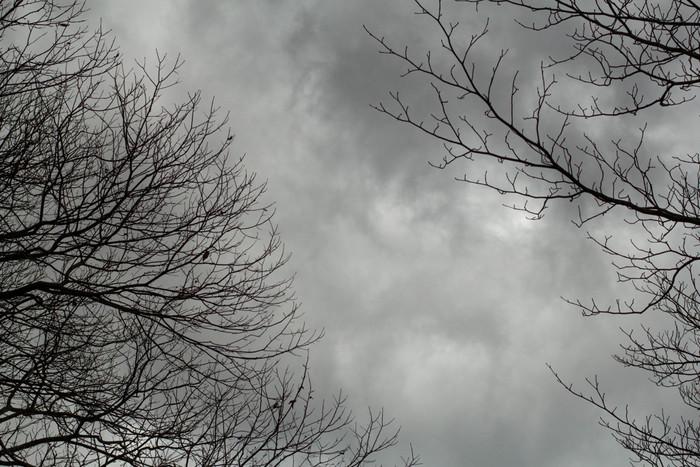 湿度の高い曇りの日は、汚れが水分を含んで落としやすくなります。また、太陽光が窓に反射することがないので、汚れも確認しやすくなるメリットもあります。