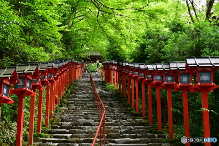 秋の紅葉だけでなく、青もみじの美しい新緑の時期の散策も人気があります。