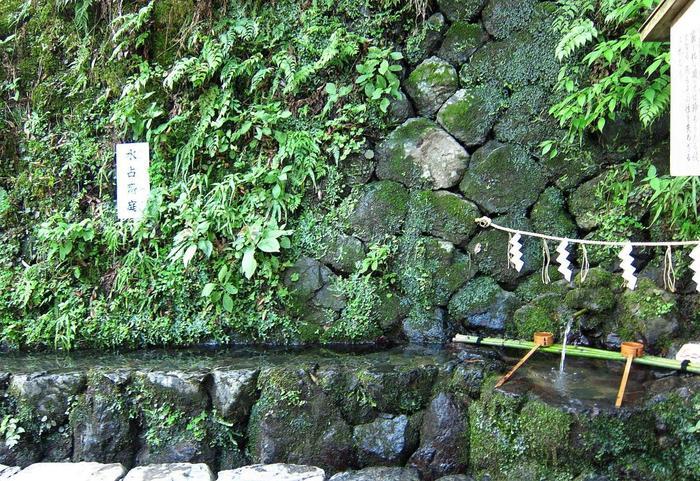 本宮では、参拝後に水占みくじを浮かべている方の姿を多く見かけますが、実は本宮でいちばん貴船の御神気を実感できるのは、水占いを行う水場のすぐ隣にある石垣から流れ出る御神水です。