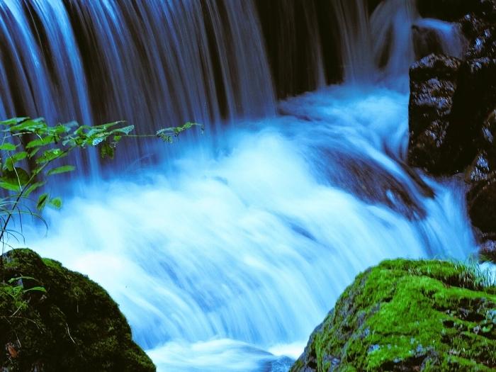 水の神さまである高龗神(たかおかみのおおかみ)が祀られており、本宮、結社、奥宮の三つの御社からなる貴船神社は、貴船川の上流にあります。