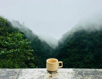 コロンビアは一日の寒暖差が激しく、雨季と乾季があることや、土壌成分からコーヒー栽培に適している地域です。酸味は強めですが全体のバランスが良く、朝の一杯に合います。