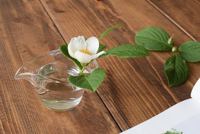 こちらの可愛い「ピッチャー」もソースやジャムを入れたり、グリーンを生けたりと、幅広い用途に活躍してくれます。こんなふうにお庭の花をさりげなく飾って、季節感あふれる素敵な食卓を演出してみませんか?