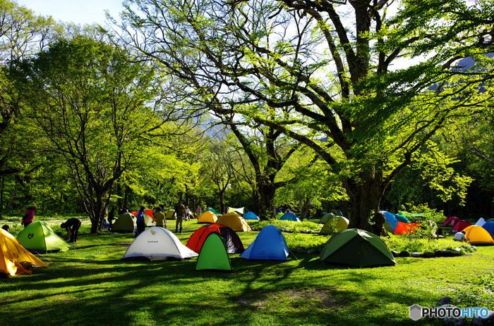 初めてのキャンプとなると、テント設営、バーベキューのための火おこしなど、全てが初挑戦なので、予想以上に時間がかかります。なので、時間に余裕をもって行動できるよう、なるべく自宅から近場のキャンプ場を選びことをおすすめします。 ネット検索すると、意外にも近場のキャンプ場がヒットするかもしれません。口コミ情報なども見ながら、まずは近場のキャンプ場を探してみましょう。