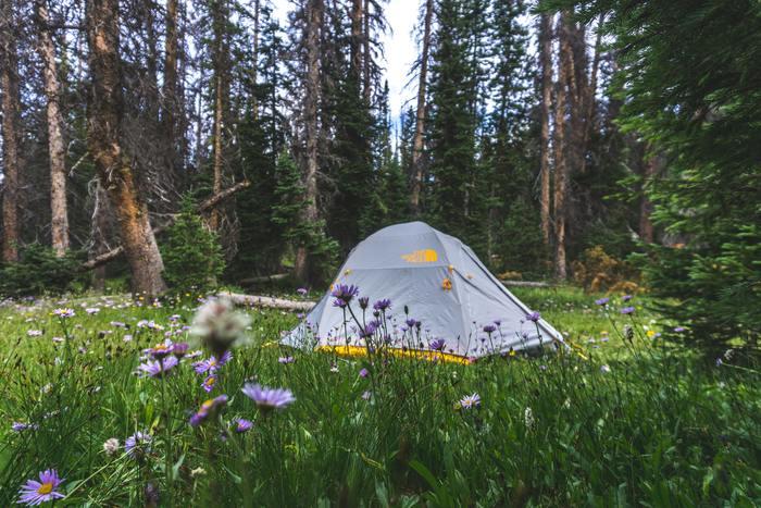 キャンプブームの今、キャンプやデイキャンプ、バーベキューに出かける人が、急増しているんだとか!自然の中で、食事をしたり、のんびりしたり…。そんなひとときは、屋内で過ごすのとはまた違った魅力がいっぱいです。