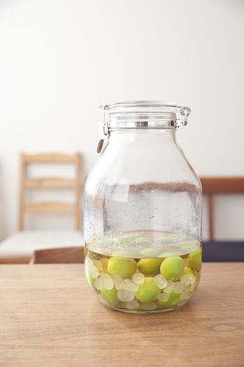 青梅と氷砂糖のほかに、酢やリンゴ酢を多めに加えて、梅サワーにするアイデアも。きりっと爽やかで切れのいい飲み口です。