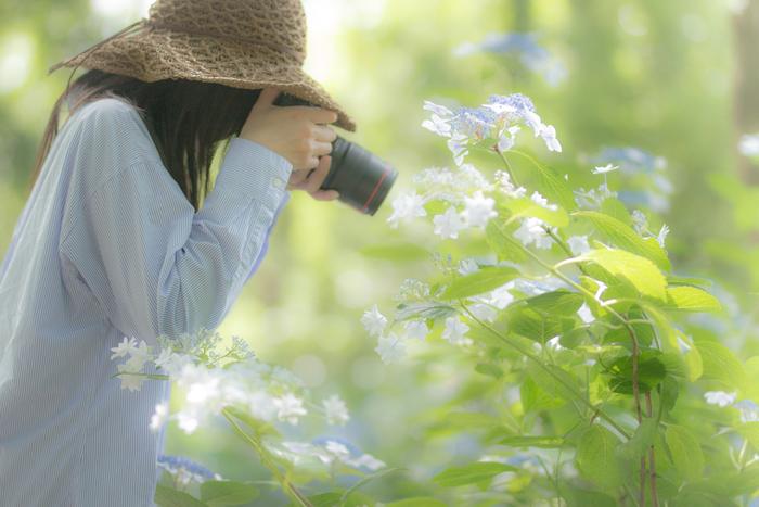 紫陽花鑑賞に一緒に出かけた友達や家族を背景に写してみましょう。その日の思い出になるのはもちろん、きっと相手にも喜んでもらえるはずです。