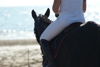 乗馬教室は自然豊かな郊外にあることが多く、浜辺や高原などをお散歩できることも。休日の日帰り旅行も兼ねて通うと楽しいですよ。