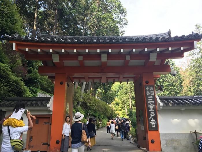 約1200年前に光仁天皇の勅願で創られたと言われている「三室戸寺」は、西国三十三所巡礼の十番札所とされ多くの巡礼者が毎日訪れます。また「あじさい寺」の異名を持つことでも有名で、この時期には紫陽花をひと目見ようと、多くの観光客が訪れます。