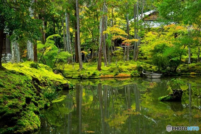 京都の松尾にある西芳寺は「苔寺」として有名で、国の特別名勝及び史跡に指定され、1994年にはUNESCOの世界文化遺産「古都京都の文化財」の1つにも登録されています。その名の通り庭園一面を包み込むように、120余種もの美しい苔が生い茂り、この景色を楽しむのに最適なのが、雨の季節なのです。