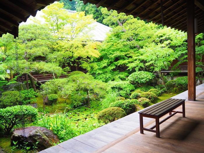 もみじの名所として名高い「永観堂」は禅林寺の総本山。今の時期は緑がとても綺麗ですが、こちらに祀られている阿弥陀様が少し変わっていて「みかえり阿弥陀」として知られています。首を横に向けて振り返って下さっているような、その姿を一度は目にしておきたいですね。