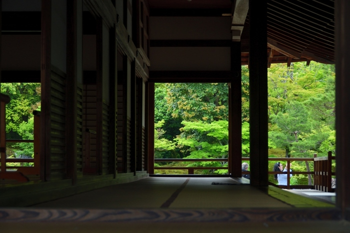 大方丈の縁側に座りながらゆったりと眺める「曹源池庭園」もまた格別です。雨がしたたるその景色は風情があり、心が洗われるよう。時間を忘れて何時間でも座って見ていられるくらい素敵な時を過ごすことができますよ。