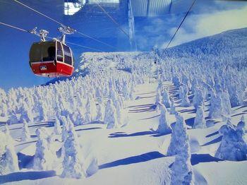 冬場はこのような樹氷が見渡せて、まさに、非日常体験。その景色は「スノーモンスター」と呼ばれ親しまれています*