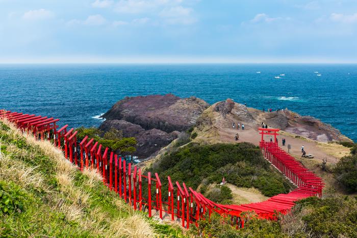 朱色の鳥居と日本海のブルーが織りなす美しい風景が多くの人々を魅了しています。なんとも神秘的ですね。