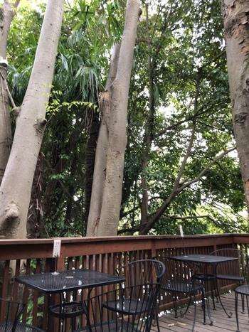 お天気の良い日はテラス席がおすすめ。高麗川のせせらぎを耳にして草木の香りを感じながら過ごせば、日頃の疲れもふっと抜けていきます。