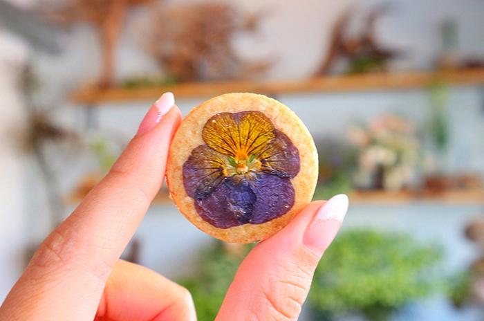 最初にご紹介するのは、西荻窪の一角に佇む、花とお菓子のお店「cotito(コチト)」さん。おすすめは、一目で心奪われるエディブルフラワー(食べられるお花)の焼き菓子やケーキです。画像はザクザクとした食感で、素朴な味わいが広がるビオラのサブレです。シンプルで美しいハナサブレは、お友達へのちょっとしたプレゼントにぴったり。