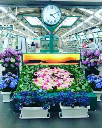鎌倉散策6月篇は、6月の花である紫陽花を堪能できる代表的なスポットと、その近隣で美味しいコーヒーが頂けるお店をご紹介したいと思います。