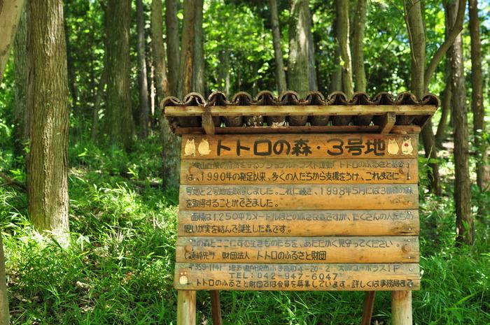 「となりのトトロ」の舞台のモデルになったと言われるのが、埼玉県所沢市や入間市、東京都の武蔵村山市や瑞穂町など、東西約11km、南北約4kmに広がる狭山丘陵にあります。この「トトロの森」は、1991年に1号地が誕生し、現在は49号地まで増えています。