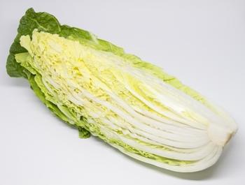 あと一品足りない…そんなときにぴったり《葉物野菜》を使ったレシピまとめ