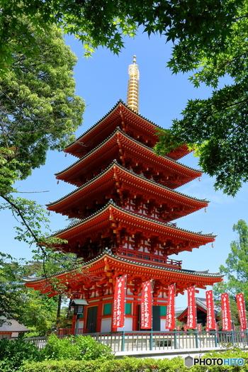 高幡不動尊金剛寺は、京王線の高幡不動駅から徒歩5分ほどの所にある、新選組ゆかりの地として有名なお寺です。秋には綺麗に色づいた紅葉も楽しめます。
