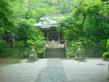 鎌倉七福神の一つでもある「御霊神社」。敷地内に足を踏み入れるとわかる閑静でとても神秘的な神社です。御霊神社の紫陽花はちょうど鳥居の入り口にあります。